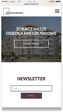 NGDevelopment.pl - website