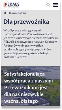pekaes.pl - website